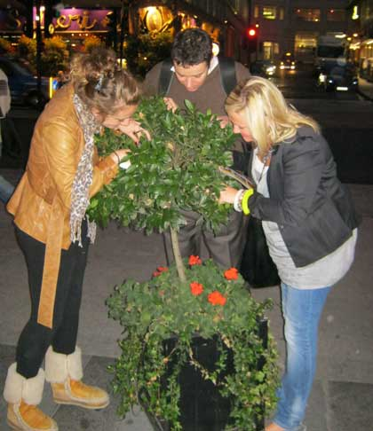 A team does a pose on the City Christmas Treasure Hunt.