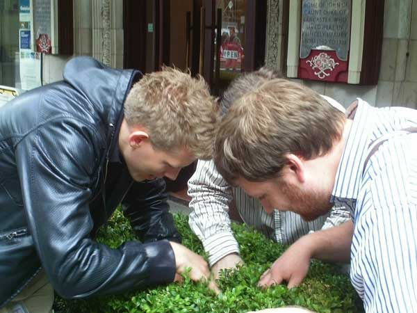 Three competitors searching for a clue in a Westminster flower bed.